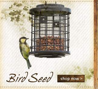 Bird Seed Shop Now